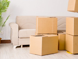 Top Packers & Movers Bangalore